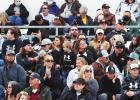 A crowd of Lobo fans