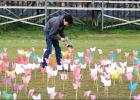 1700 Butterflies Placed at Rising Star School