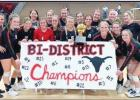 LADY MAVS WIN BI-DISTRICT; FALL TO BROCK IN AREA